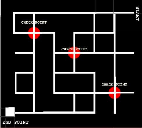 The maze!